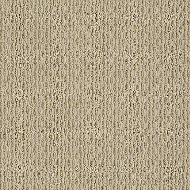 Charming Look Residential Carpet