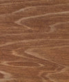 Arborcoat Translucent Classic Oil Finish