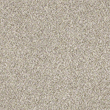 Delicate Distinction Classic I Residential Carpet
