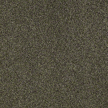 Milford Sound Residential Carpet