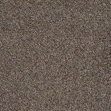 Subtle Flair Residential Carpet