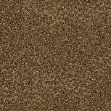 Cheshire Residential Carpet