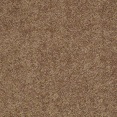 All Star Weekend I 12' Residential Carpet