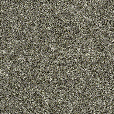 Find Your Floor (T) Residential Carpet