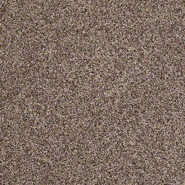 Power Buy 50 (B) Residential Carpet