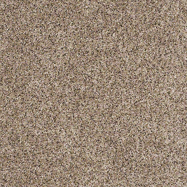 Power Buy 75 Residential Carpet