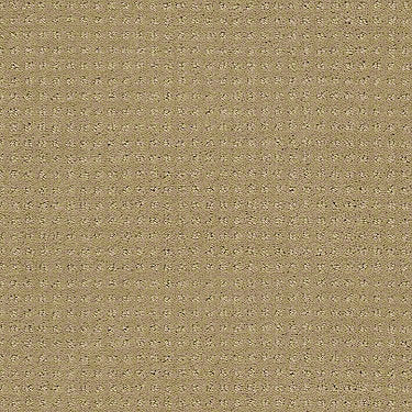 Enduring Comfort Pattern Residential Carpet