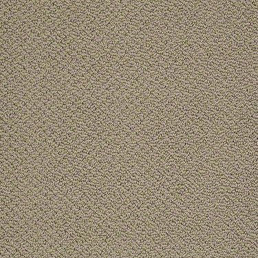 Timeless Charm Loop Residential Carpet