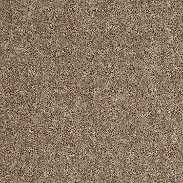Ride It Out (S) Residential Carpet