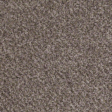 Ride It Out (B) Residential Carpet