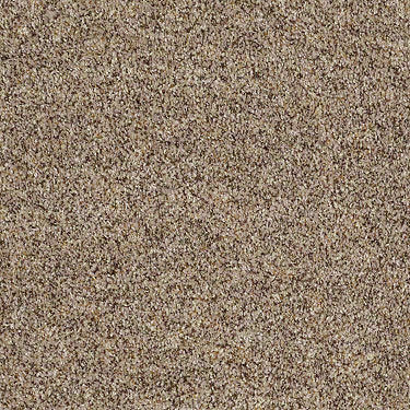 Heads Up Residential Carpet