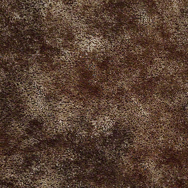 Appaloosa Residential Carpet