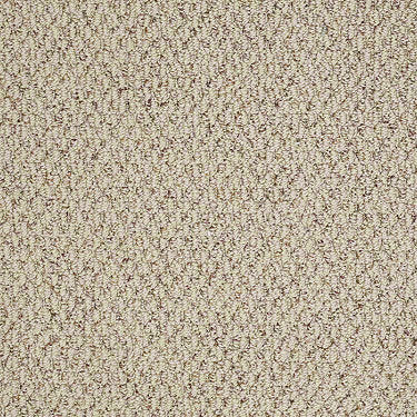 In A Flash Residential Carpet