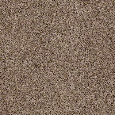 Leading Legacy Residential Carpet