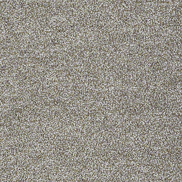 Expect More (T) Residential Carpet