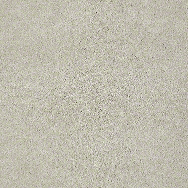Invitation Only III Residential Carpet