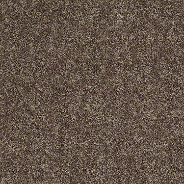 Ride It Out (S) Net Residential Carpet