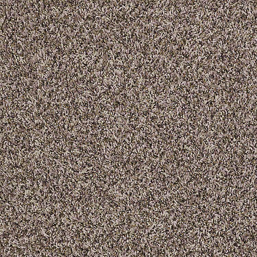 Ride It Out (B) Net Residential Carpet