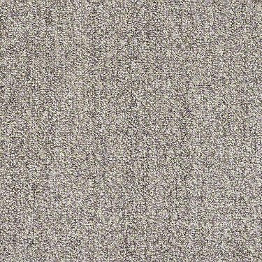 Have Fun Residential Carpet