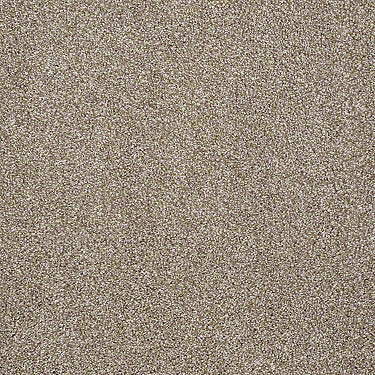 What'S Up Residential Carpet
