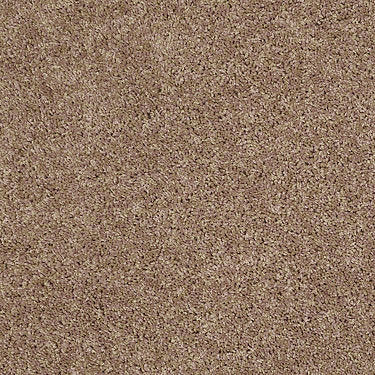 Pay Attention Net Residential Carpet