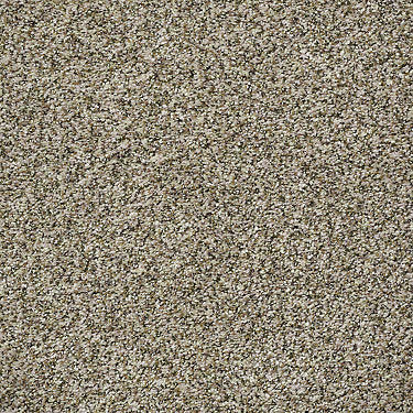 Power Buy 276 Residential Carpet