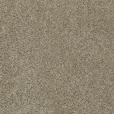 Just Own It (S) Residential Carpet
