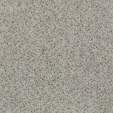 Spice It Up Residential Carpet
