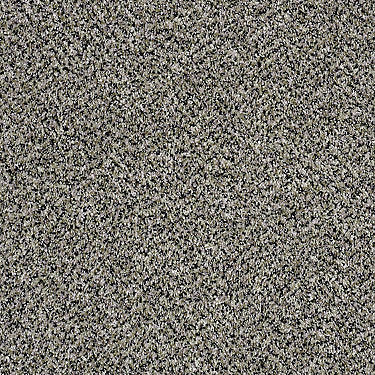 Because We Can II 15 Residential Carpet