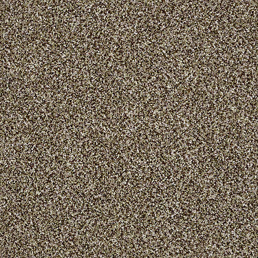 Work The Color Residential Carpet