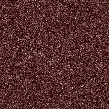 Wild Extract Residential Carpet