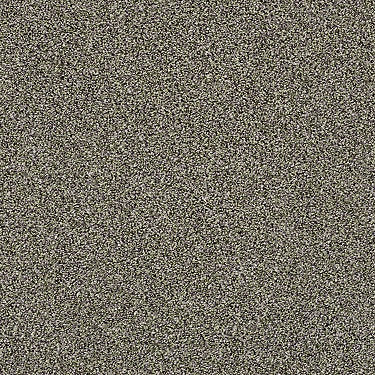 Of Course We Can III 12' Residential Carpet