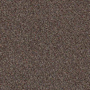 Of Course We Can III 15' Residential Carpet