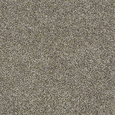 Shake It Up (A) Residential Carpet
