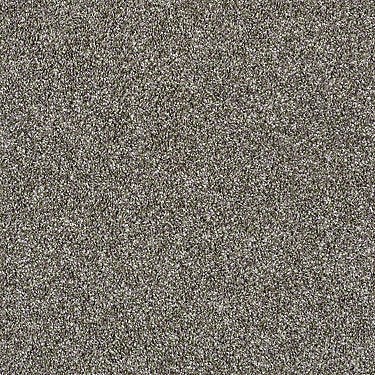 Shake It Up Net Residential Carpet
