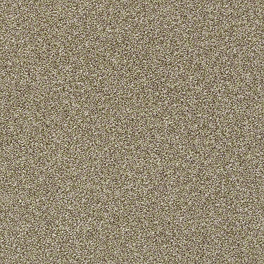 Just A Hint I Residential Carpet