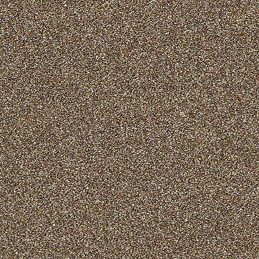 Points Of Color I Residential Carpet