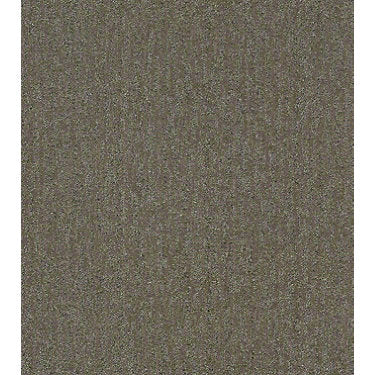 Obvious Choice Residential Carpet