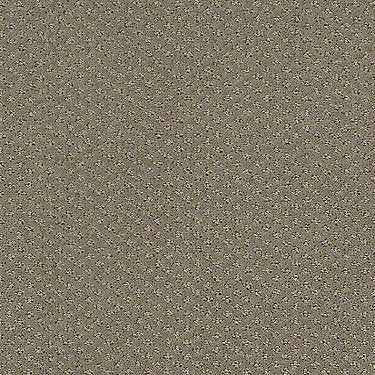 Infallible Instinct Residential Carpet