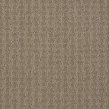 Complete Control Residential Carpet