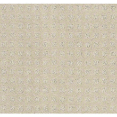 Alluring Disposition Residential Carpet