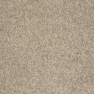 Designer Twist Platinum (S) Residential Carpet