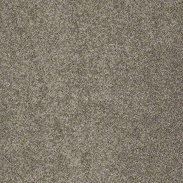 My Inspiration II Residential Carpet