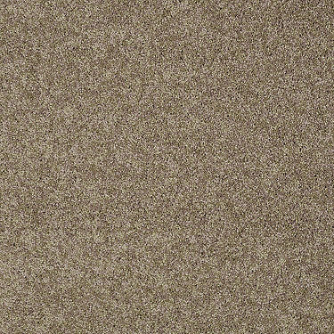 My Inspiration III Residential Carpet