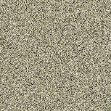 Artist View Loop Residential Carpet
