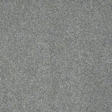 Platinum Texture 12' Residential Carpet