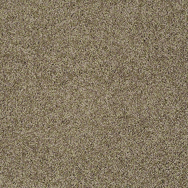 Gold Twist Residential Carpet