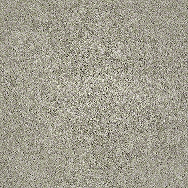 Platinum Twist Residential Carpet