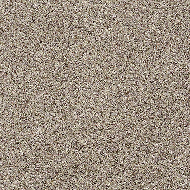 Silver Twist Accent Residential Carpet