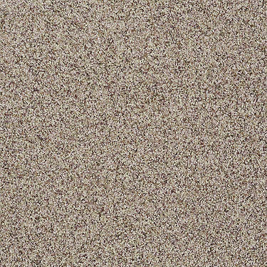 Platinum Twist Accent Residential Carpet